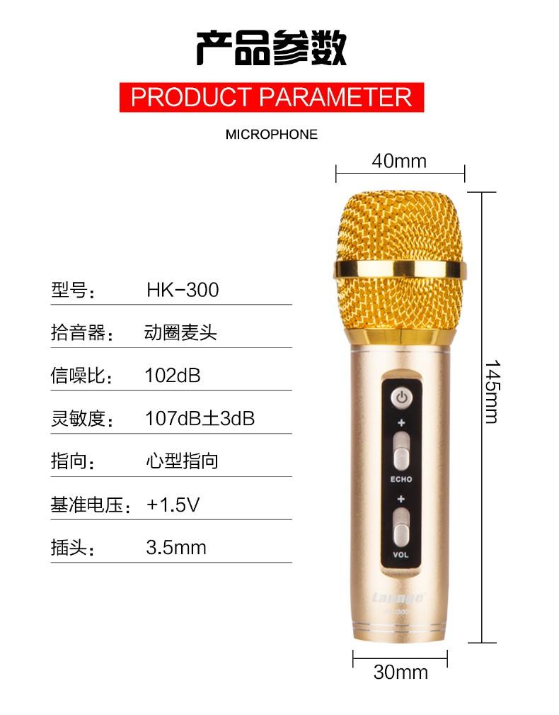 HK-300_19.jpg
